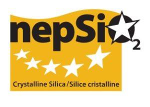 Nepsi Logo